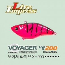 VOYAGER 200 / 보이저 200