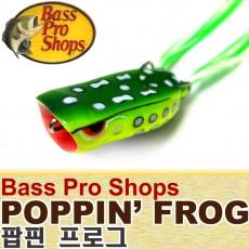 POPPIN FROG / 팝핀 프로그